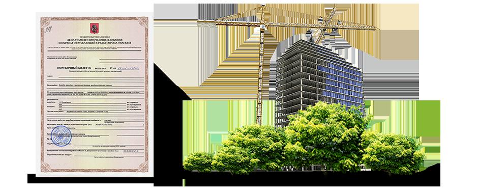 Порубочный билет и (или) разрешение на пересадку зеленых насаждений для вновь строящихся объектов